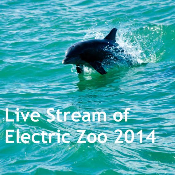 electric zoo live stream www.hammarica.com/pr